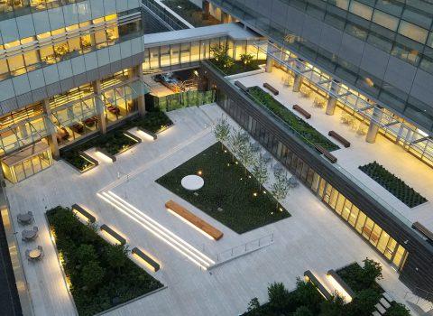 NYU LMC Alumni Courtyard
