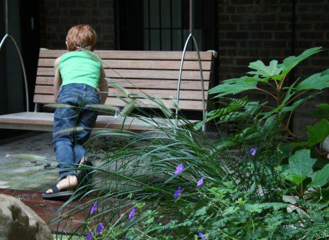 Tidal Garden