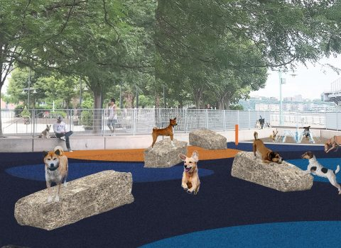 Pier 84 Dog Run at Hudson River Park